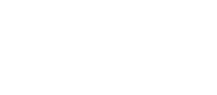 Chameleon Technology Partners logo